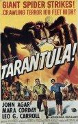 tarantola