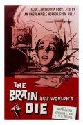 il-cervello-che-non-voleva-morire