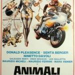animali-metropolitani